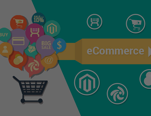 Ecommerce Solution image